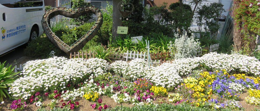 新吉田地域ケアプラザの花壇