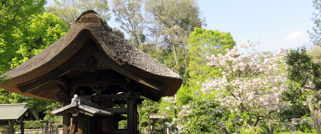 新羽町・西方寺